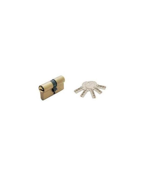 Cilindro De Seguridad laton + 5 llaves ISEO R6